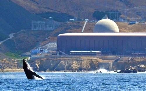 U.S. CO2 Emissions Rise As Nuclear Power Plants Close