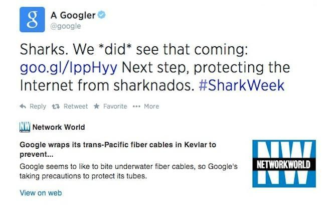How Google Stops Sharks From Eating Undersea Cables