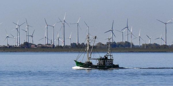 Renewable Energy Is Now The Cheapest Option - Even Without Subsidies