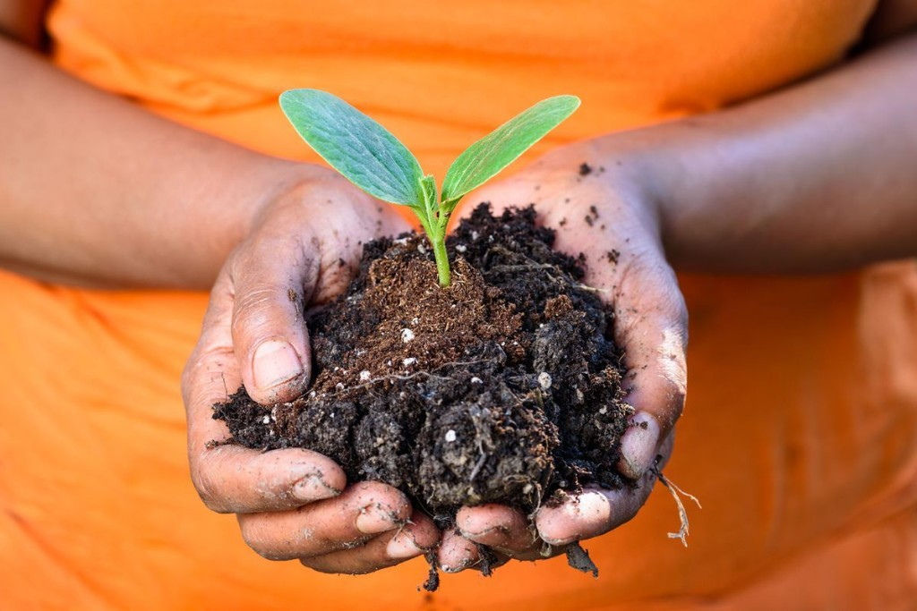 Earth's Rapidly Degrading Soil Is Bad News For Human Health