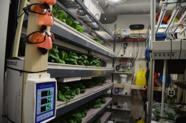Can LED Advances Help Vertical Farms Take Root?
