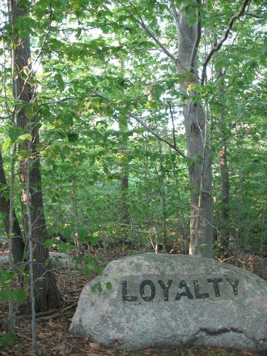 Making Loyalty Pay: Six Lessons From The Innovators
