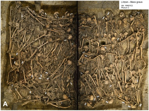 Mass Grave From Thirty Years' War Reveals Brutal Cavalry Attack