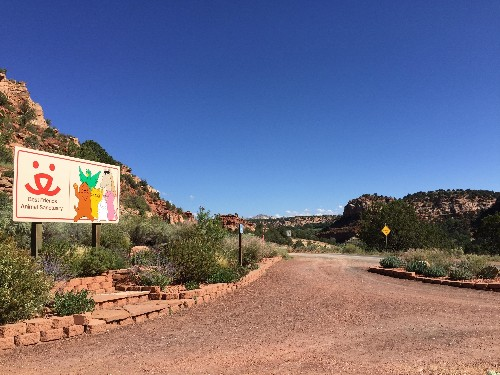 Sleepover With An Adoptable Pet At This Animal Sanctuary In Kanab, Utah