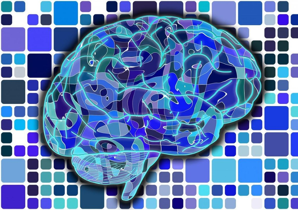 Brain's Memory Capacity Rivals World Wide Web