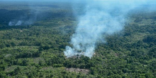 Brazil's President: We Don't Have The Resources To Fight Amazon Rainforest Fires