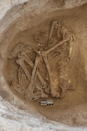 These Ancient Headless Corpses Were Defleshed By Griffon Vultures