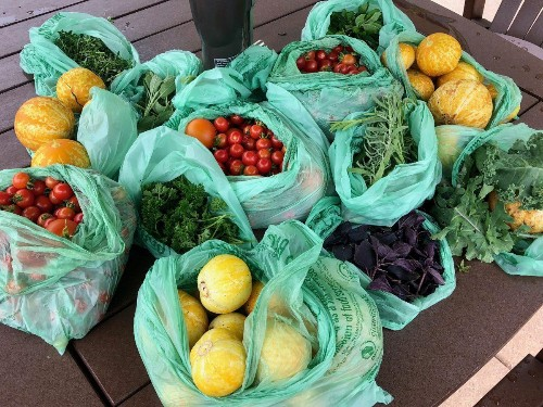 The Yellow Tractor Project Is Bringing Fresh Food To Areas In Need Throughout Chicago