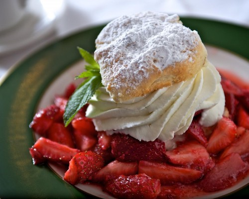 5 Mouthwatering New Orleans Restaurants You Must Try