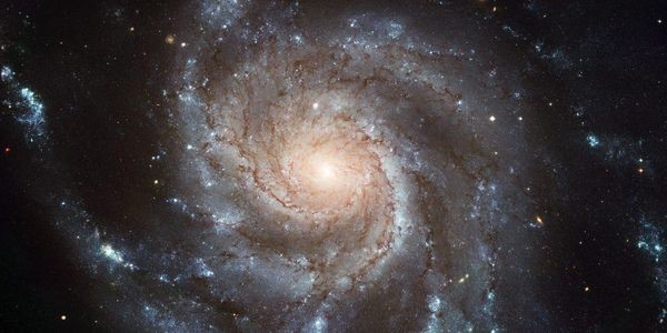 How Galaxies Get Their Spirals