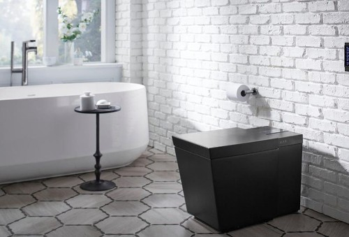 Why You Might Want A Bidet-Style Toilet