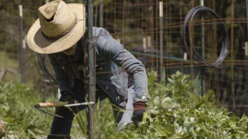 Flow Kana Highlights Emerald Triangle Farmers In New Video Series