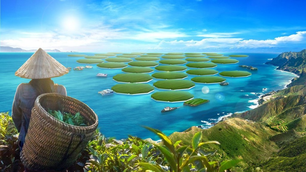 Ocean Crops: Is This The Next Frontier For Agriculture?