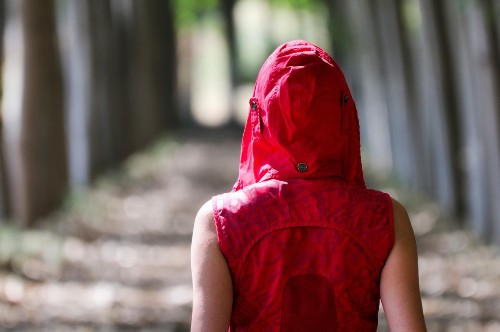 'Forest Bathing' Really May Be Good For Health, Study Finds