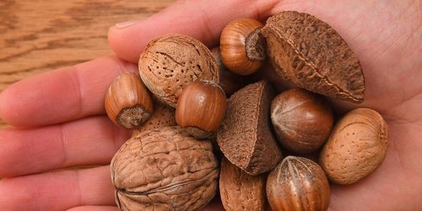 Consuming This Amount Of Nuts Daily May Help With Erectile Dysfunction