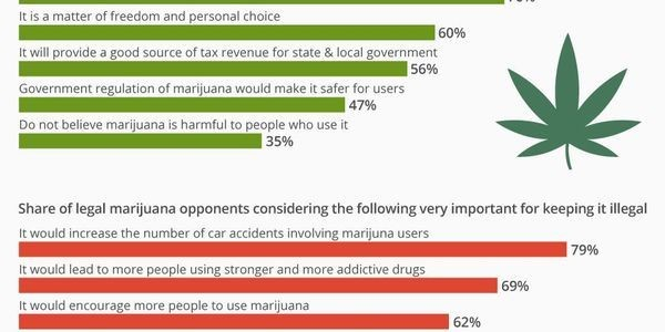 The Arguments For And Against Marijuana Legalization In The U.S. [Infographic]