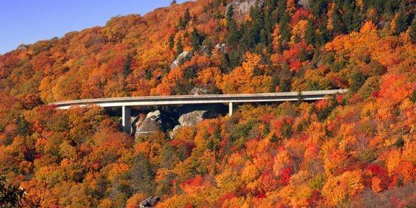 Fall's Biggest Destinations: Canada, Japan, The Carolinas And More