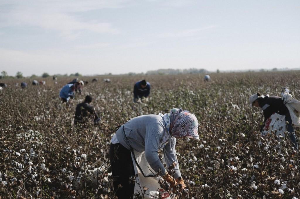 As China Faces U.S. Forced Labor Sanctions, Uzbekistan Becomes A Model