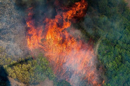 Climate Change Is Making Wildfires Worse