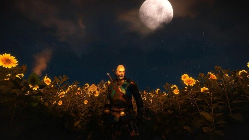 From Velen To Ard Skellig 'The Witcher 3' Is The Most Beautiful Game