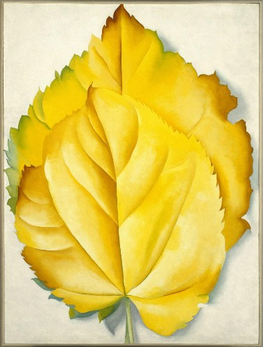 O'Keeffe, And Not Just Georgia, Generating Fresh Buzz In Art World