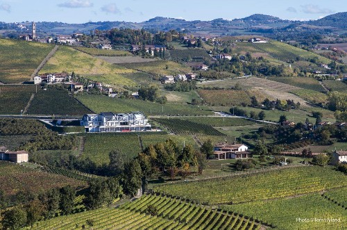 The 25 Best Producers Of Barolo