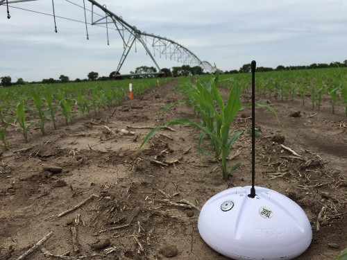 Sensors, Insects, Drones And Sustainable Nitrogen Define Innovation In European AgTech Start Ups