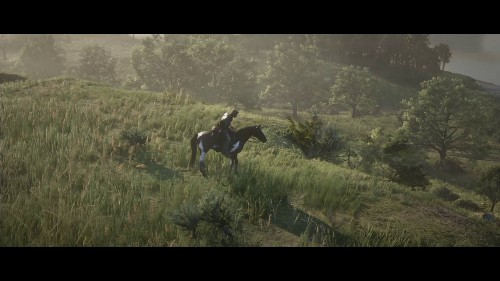 'Red Dead Redemption 2' 7 Best Cheat Codes To Power Through The Story Mode