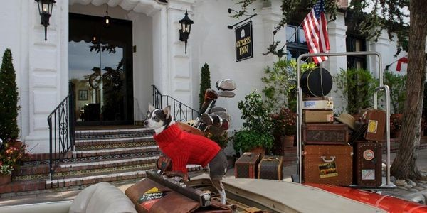 If You Can't Bear The Thought Of Leaving Your Pooch At Home On National Dog Day, Head To Carmel-by-the-Sea