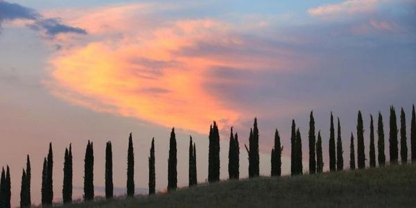 Why You Should Check Out These 6 Awesome Italian And French Wine Towns