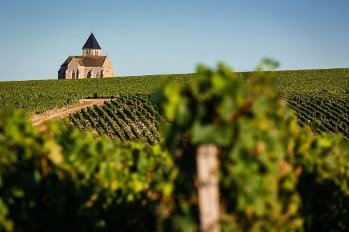 Wines Of The Week: Classics From France And Italy