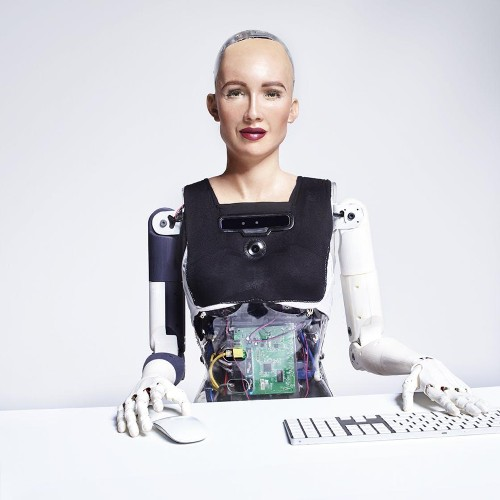 Little Sophia: A New Robot Citizen Has Entered Our World
