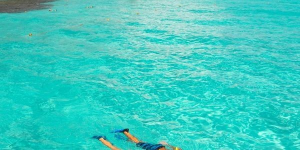The Best Excursions In Cancun