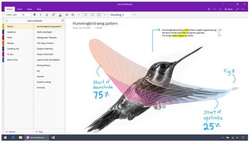 Microsoft Is Sunsetting OneNote 2016: Here's What You Need To Know