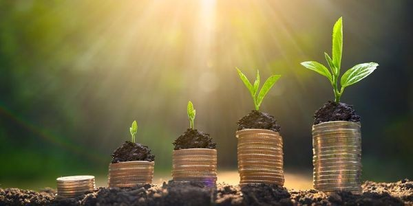 4 High-Yielding Monthly Dividend Stocks To Buy