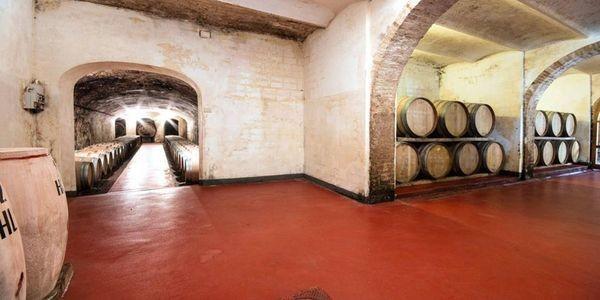New Tuscan Reds From Tenuta di Ghizzano