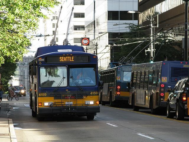 Seattle Bases Bus Fares on Income. The Interesting Question: Why?
