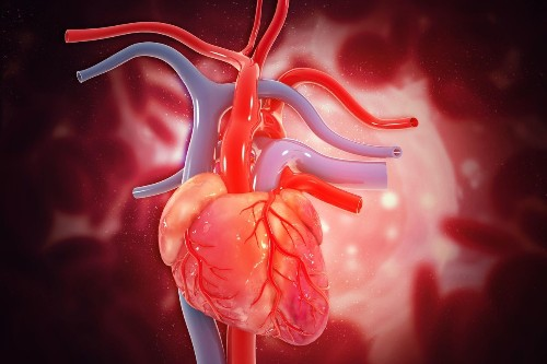 Artificial Intelligence Detects Heart Failure From One Heartbeat With 100% Accuracy
