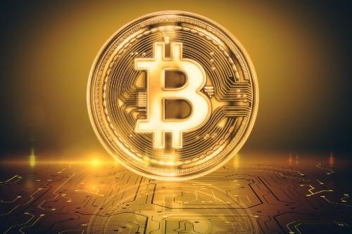 Bitcoin's 2020 Rally; Financial Advisors Opening Clients' Doors To Crypto