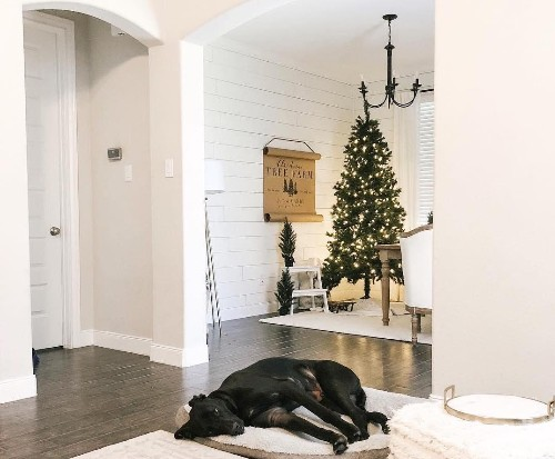Elevate Your Home With These Holiday Decor Trends