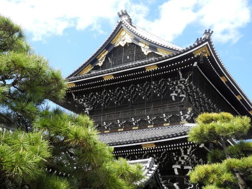 Why You Should Learn Japanese Before Visiting Japan