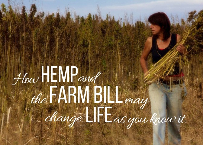 How Hemp And The Farm Bill May Change Life As You Know It