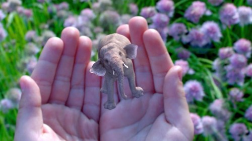 Magic Leap CEO: Augmented Reality Could Replace Smartphones