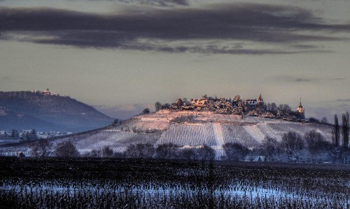Why Sommeliers Love Alsace Grand Cru Wines