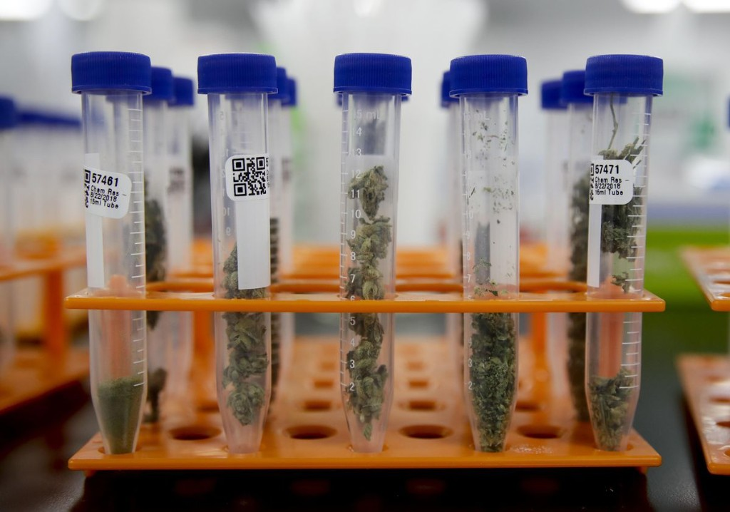 Surgeon General Believes It's High Time To Think About Science-Driven Policy For Cannabis Research