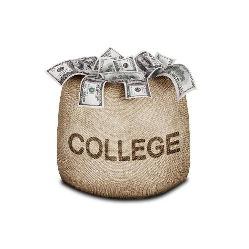 How Did 529 College Savings Plan Investors Fare In 2013?