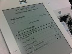 Kobo Playing to Win International Ebook Wars