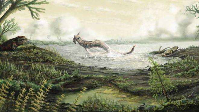 Four-Legged 350-Million-Year-Old Fossils Fill An Evolutionary Gap