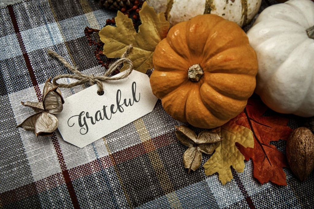 Your Thanksgiving Mindfulness Reflection On What Is Really Important In Your Life.