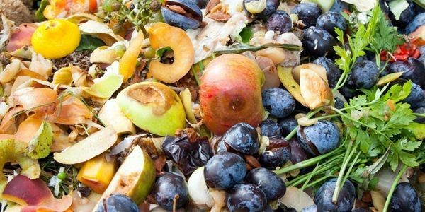 New Documentary To Explore Food Waste Solutions And Their Cost Benefits